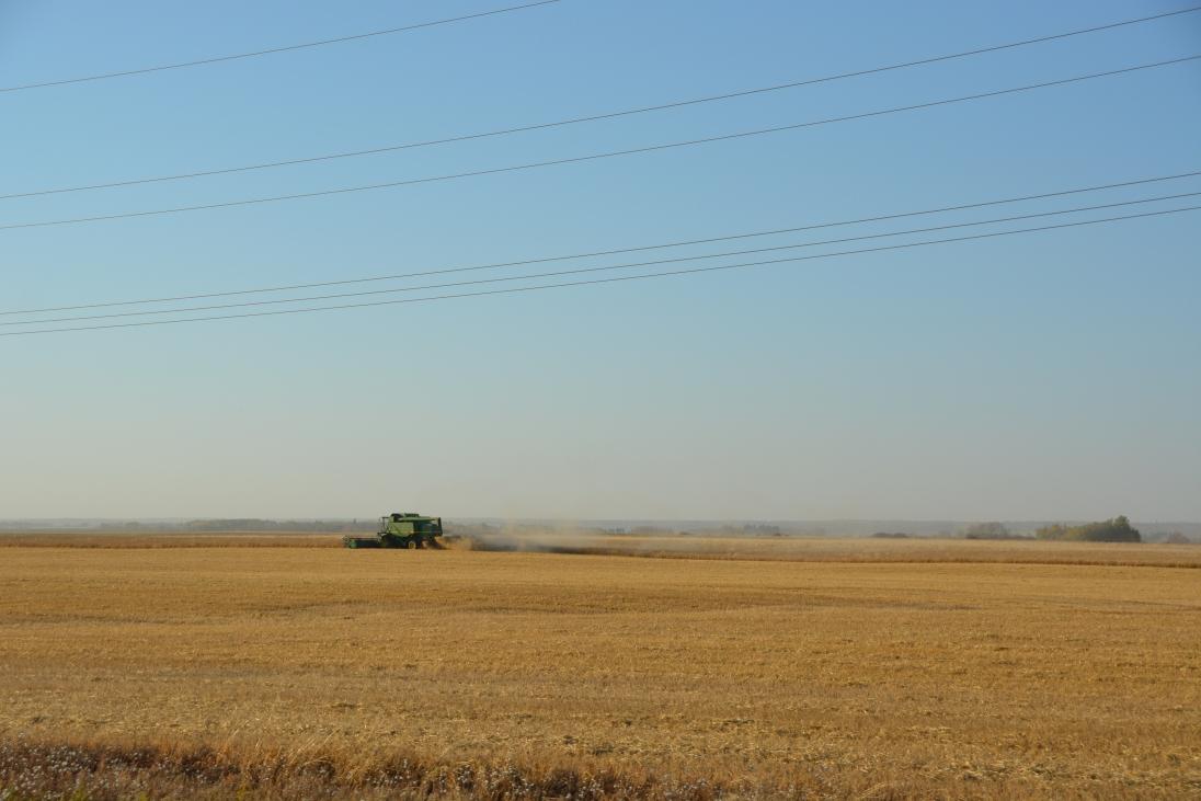 More prairie driving