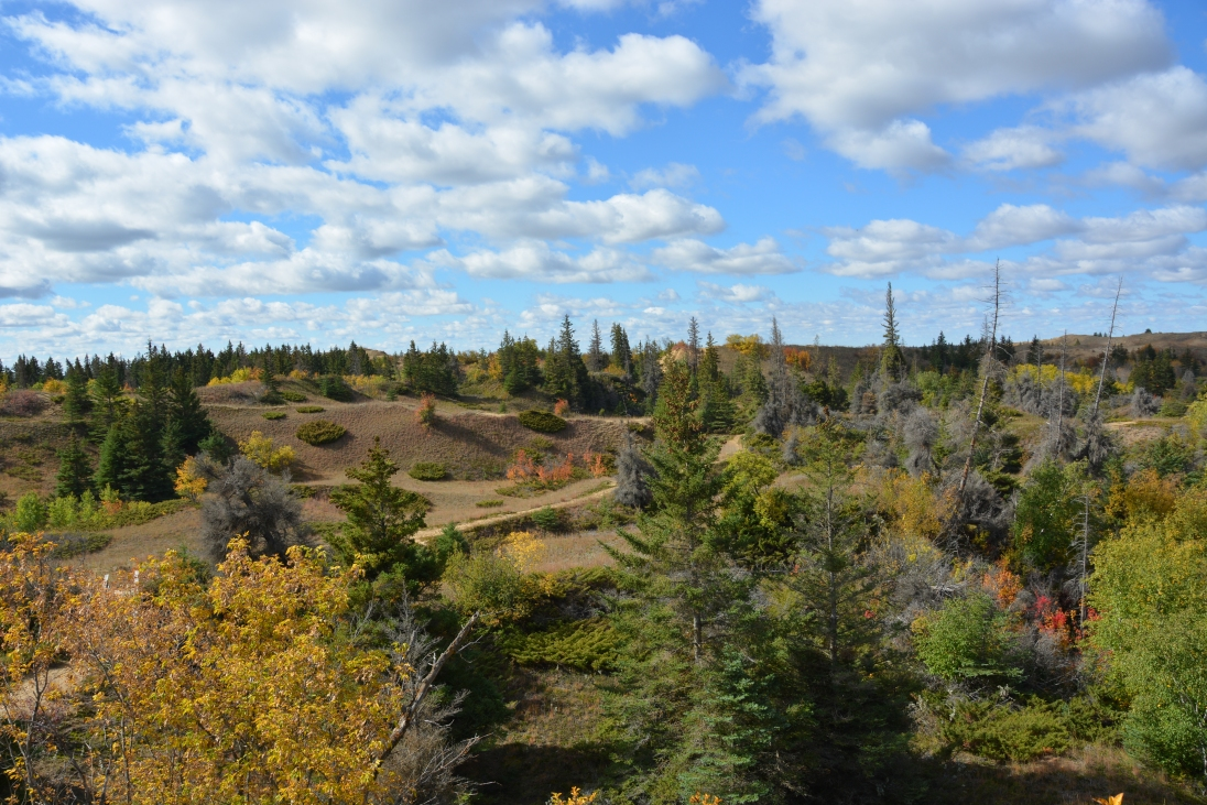Spruce Woods, MB