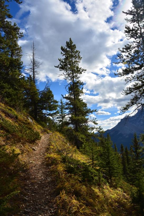 Aylmer Lookout Hike