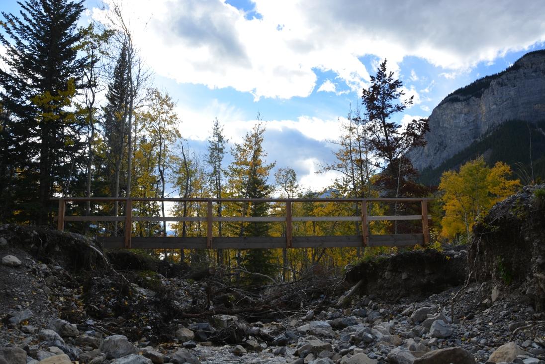 The small river bridge